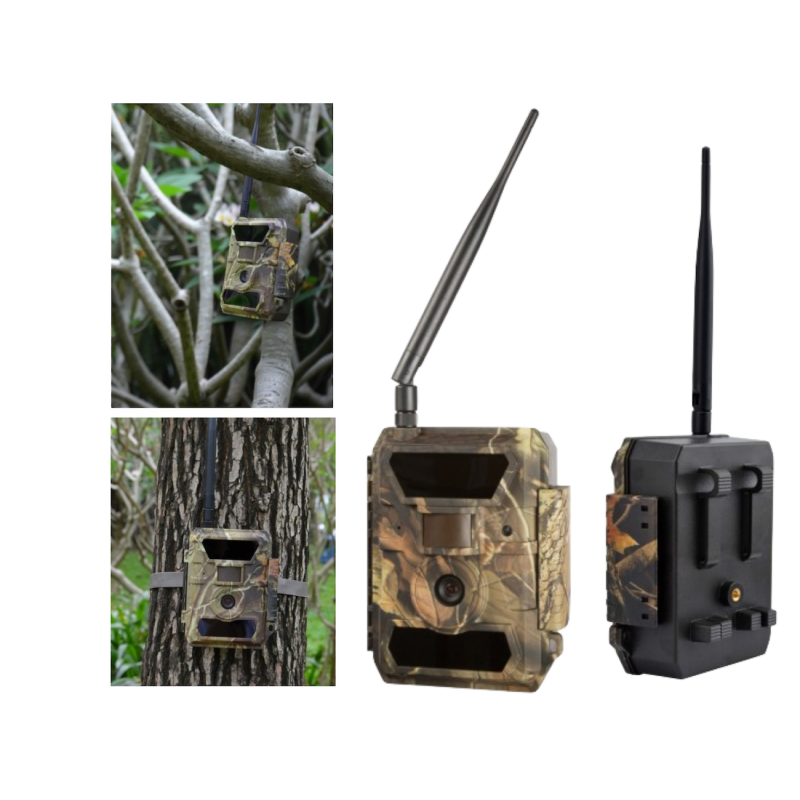 Cam ra de chasse gsm sms mms camera - Camera chasse gsm ...